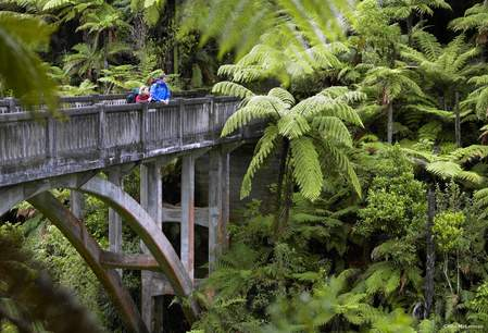 Whanganui National Park - Bridge to Nowhere
